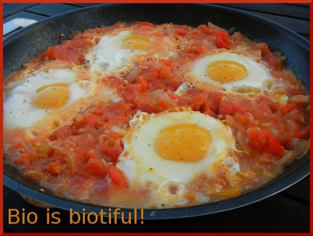 Oeufs à la tomate 2