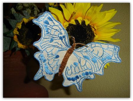 papillon-2.jpg