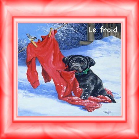 froid.jpg