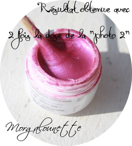 gel home made fait maison pigment sexynailshop (5)