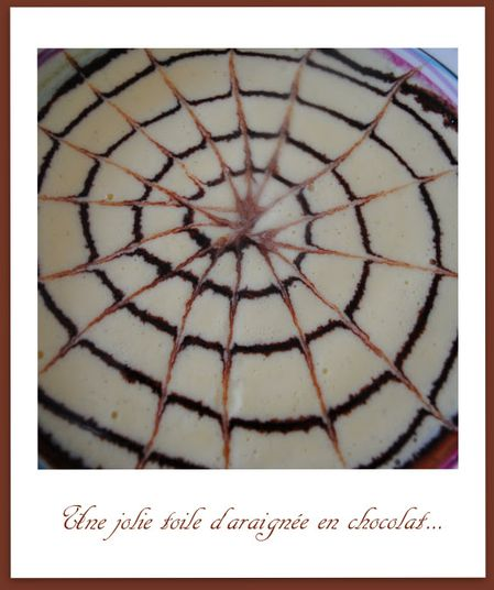 Moelleux-chocolat-chataigne 0194