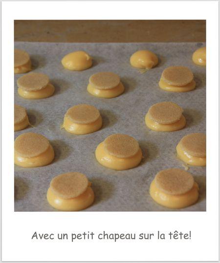 Choux-craquelin 4283