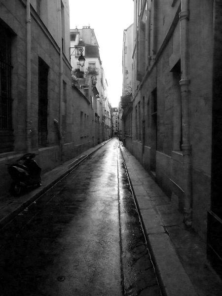 paris-2009.jpg