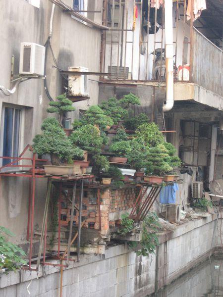 Suzhou-uncover 1934