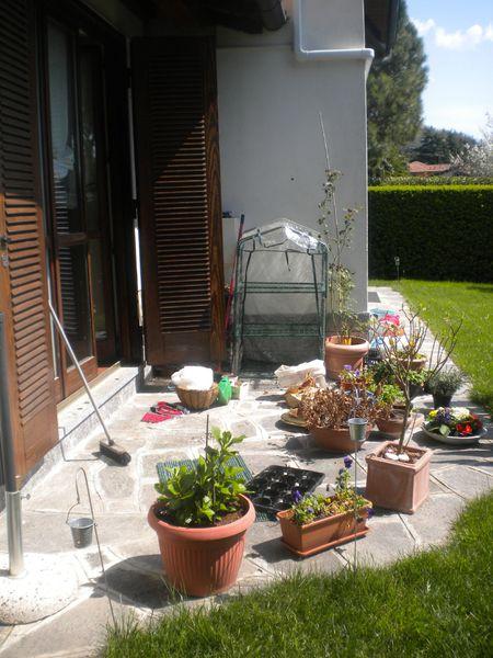giardino-disordine.jpg