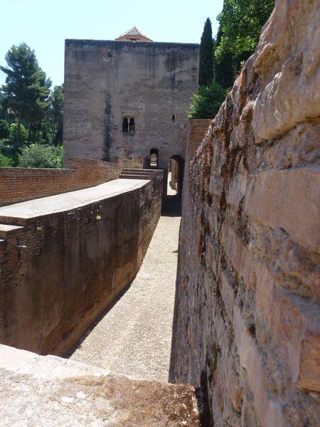 GRENADE---Alhambra---jardins-de-Partal--6-.JPG
