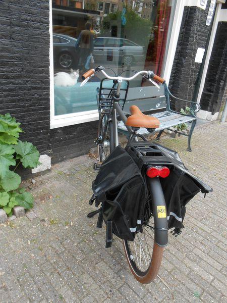 voyage-Amsterdam-Juin-2013-133.JPG