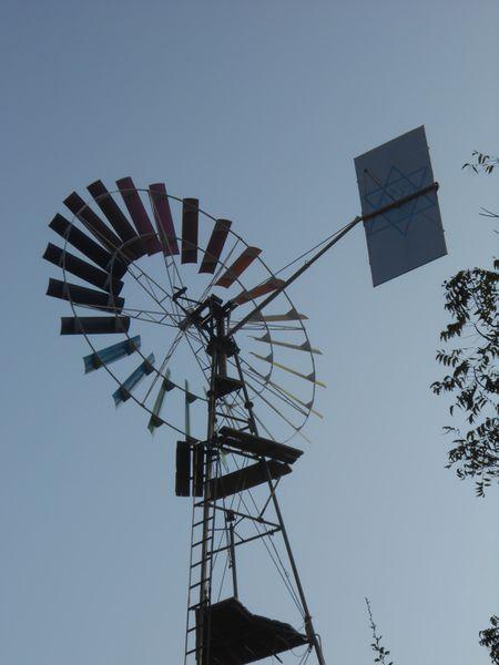 Inde-du-Sud-Fevrier-2013-054.JPG