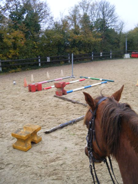 parcours cheval