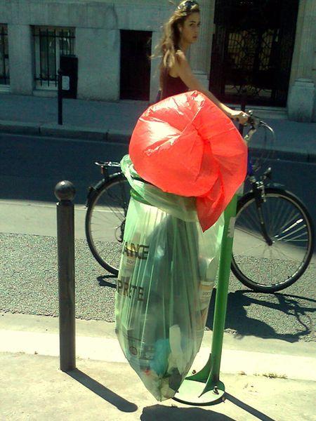 la-parisienne-3-juin-2011.jpg