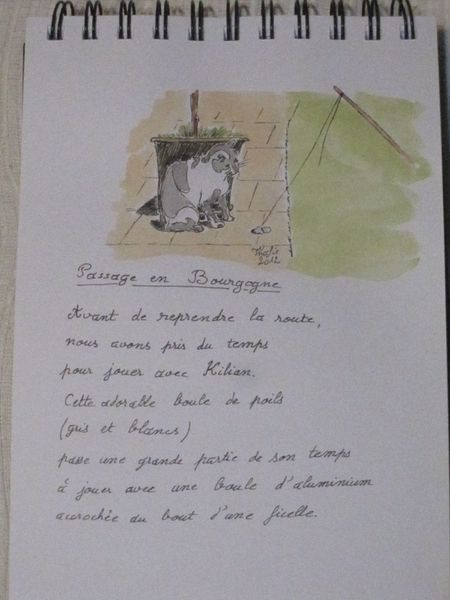 Page 04-Bourgogne-Chat-2