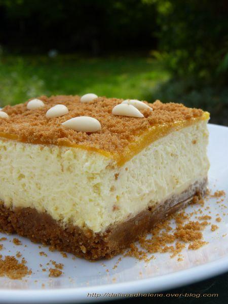 entremet chocolat blanc-mangue