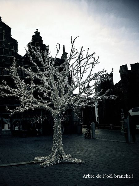 chocoshoot-illuminations-12.jpg