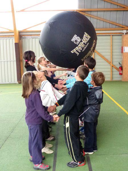 kin ball debout 2