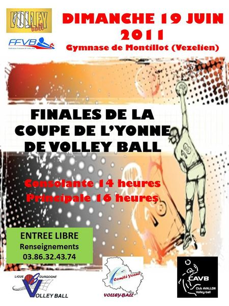 finale volley-coupe