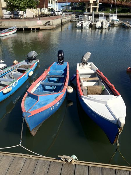 bateau tradi pêche