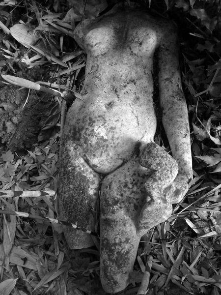 Mery-sur-oise--jardin-experimental-a-l-abandon--026---Co.JPG