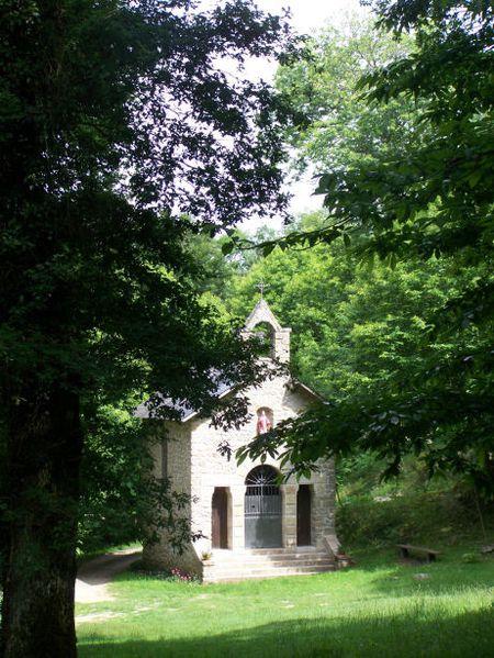 Limousin- Razès - La Roche juin 2010 317
