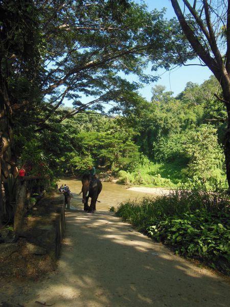 voyage en Tahaïlande 456