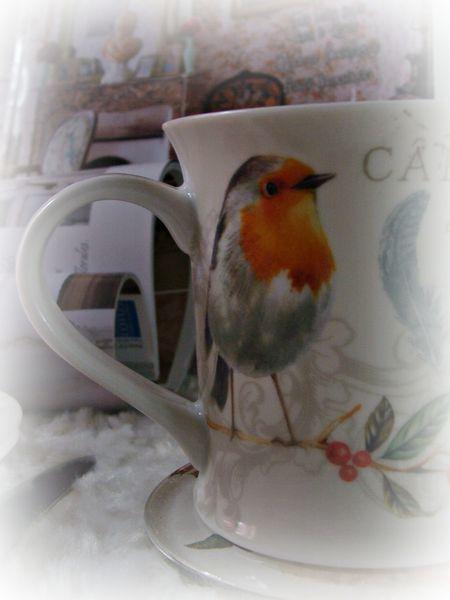 2013-01-23 cocooningbis - oiseaux jardin 007