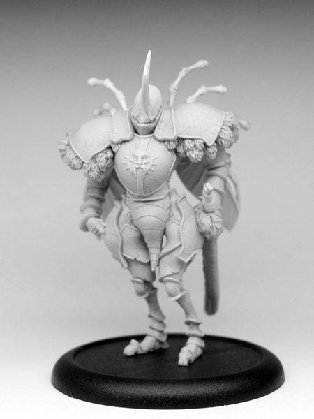 KD-Beetle-Knight-182.jpg