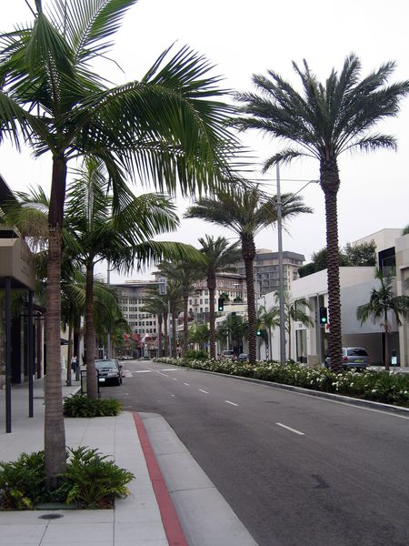 Los Angeles Rodeo Drive