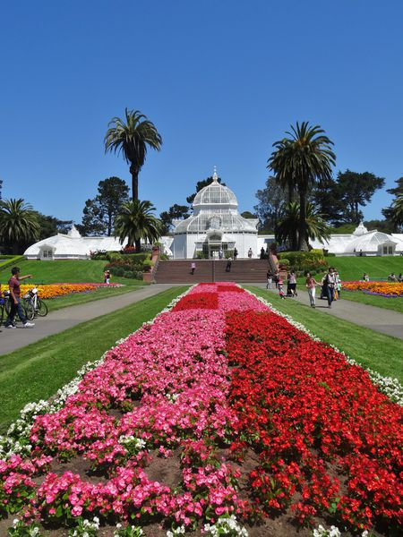 San Francisco Conservatory of the Flowers