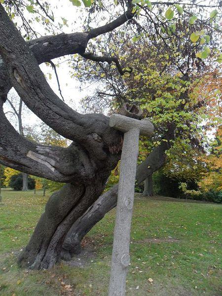 arbre-bizarre-4.jpg