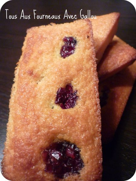 financiers aux cranberries (6) picnik