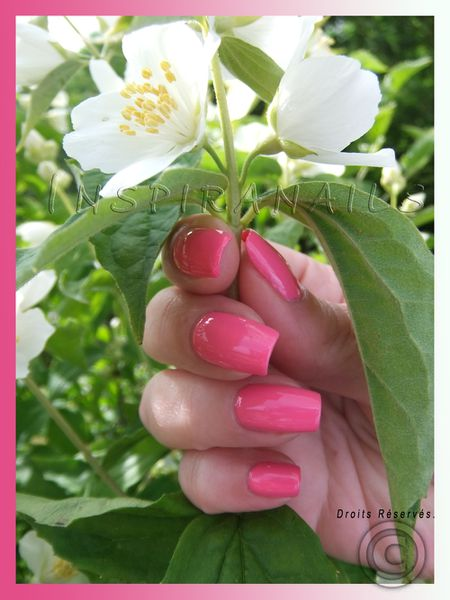 nail design rose pure