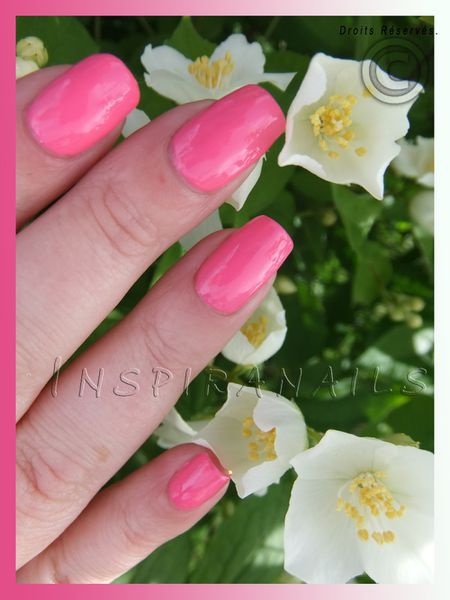 nail design rose pure2