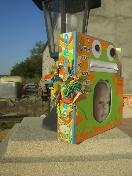 Scrap'Inès Album Grenouille 4