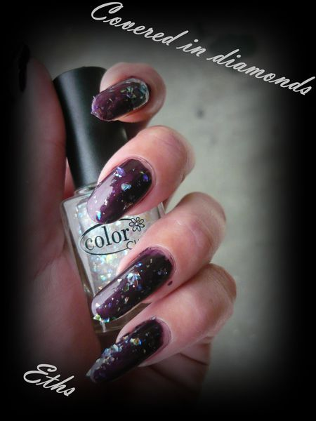 color club Covered in diamonds 902 Untamed luxury 2 couches