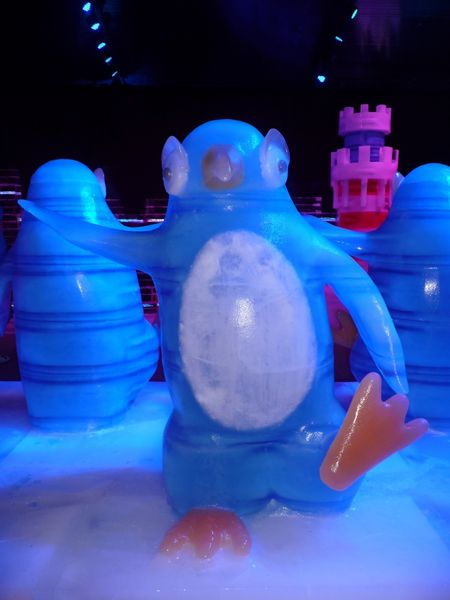 Fun Ice World (9)