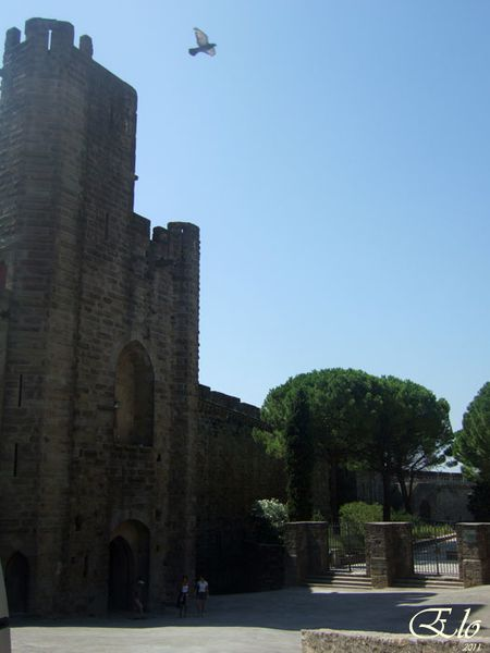 2011-aout(20)-carcassone-28