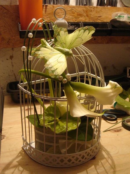 cage-florale--1-.jpg
