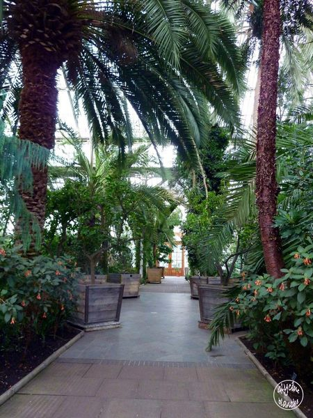 TEMPERATE-HOUSE-KEW-GARDENS-3--1600x1200-.jpg