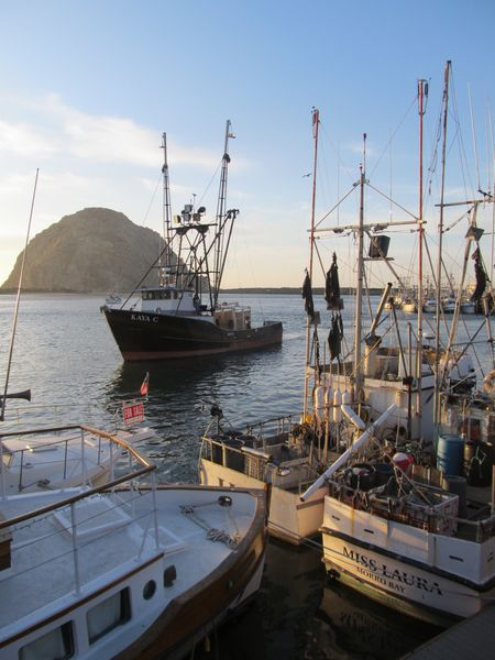 D2-Cayucos-and-morro-bay 8702