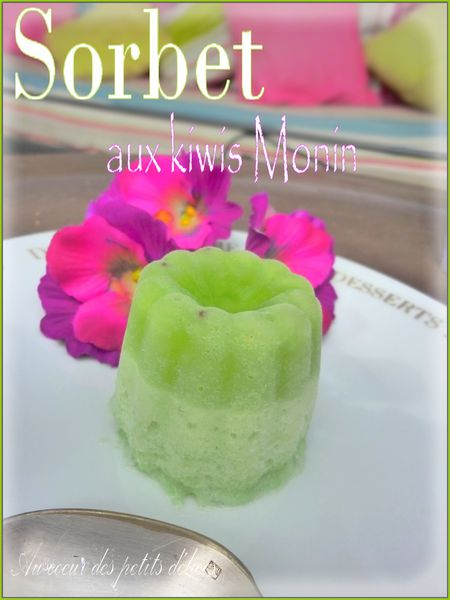 Sorbet-aux-kiwis-des-sirops-monin.jpg