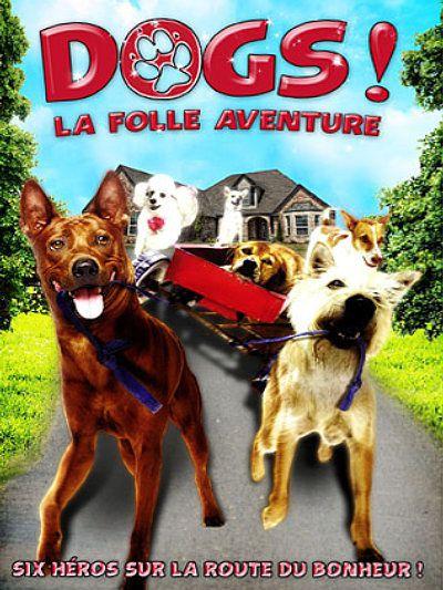 Dogs---La-folle-aventure--Ma-mha-4-khaa-khrap-.jpg