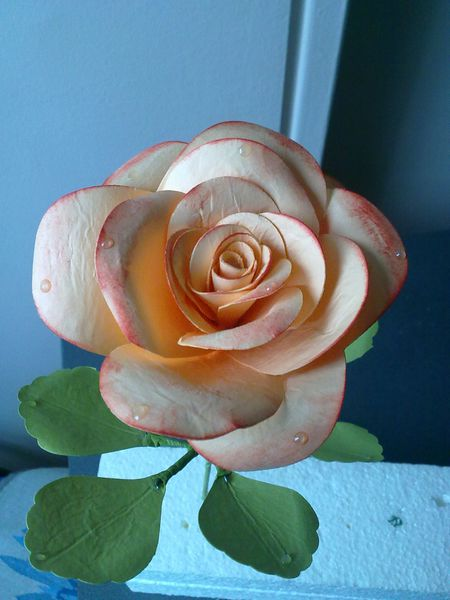 roses-sandrine-004.jpg