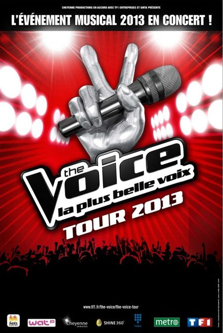 http://img.over-blog.com/450x671/2/48/64/38/tv/tf1/the-voice-tour-2013-affiche.jpg