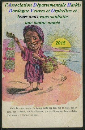 Bonne-Annee-2015-copie-1.jpg