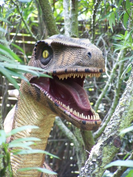 reproduction-maquette-dinosaure.jpg