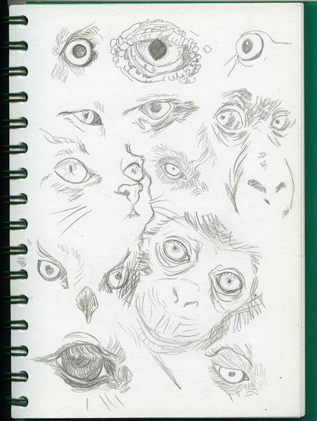 yeux-animo