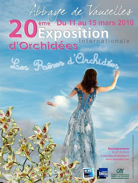 AFFICHE ORCHIDEES[1]