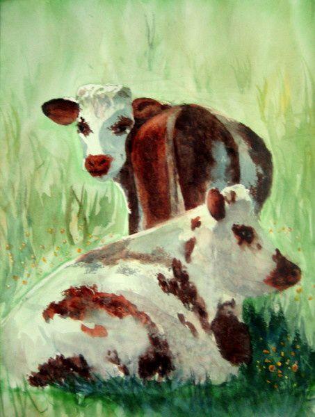 -aq--Vaches-normandes--2-.jpg