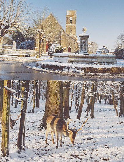 L-hiver-a-Janvry0001.jpg