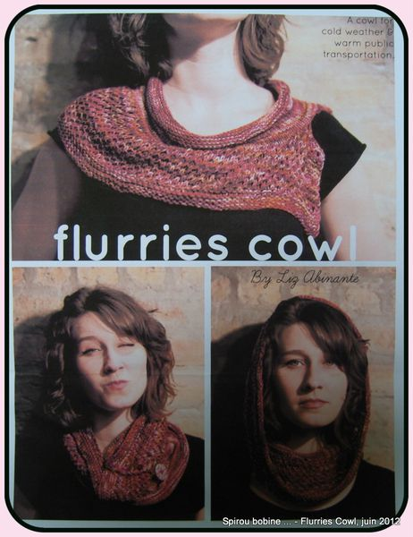 Flurries-Cowl-modele.JPG