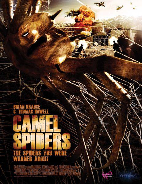 Camel-Spiders.jpg